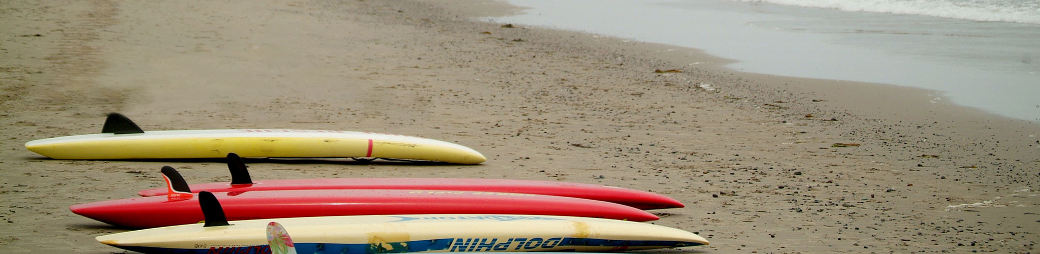 Group of surfboards lined up on the beach
